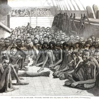 "Slave Ship 'Wildfire"" Captured with 510 Africans Aboard, Key West, Florida"